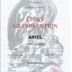 Ariel-cesky-grandsampion-2013